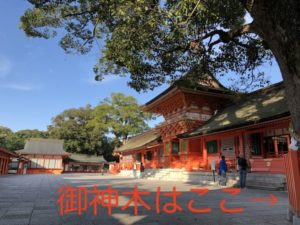 宇佐神宮のパワースポットやご利益、参拝方法は?