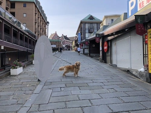 【長崎市内観光】徒歩で効率良く楽しむ方法(大浦天主堂~新地中華街)